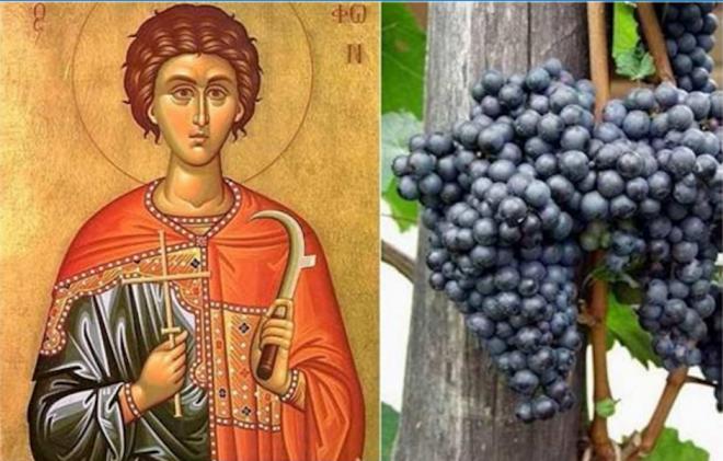 Македонија го празнува св  Трифун   заштитникот на лозарите