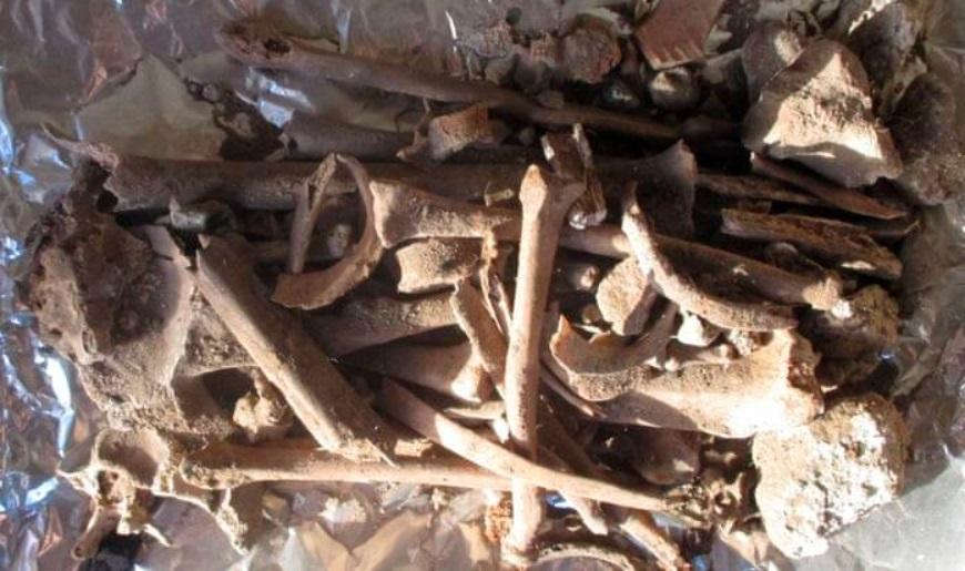 На Света Гора пронајдени коски на жена, археолозите тврдат дека ѝ припаѓаат на српска царица
