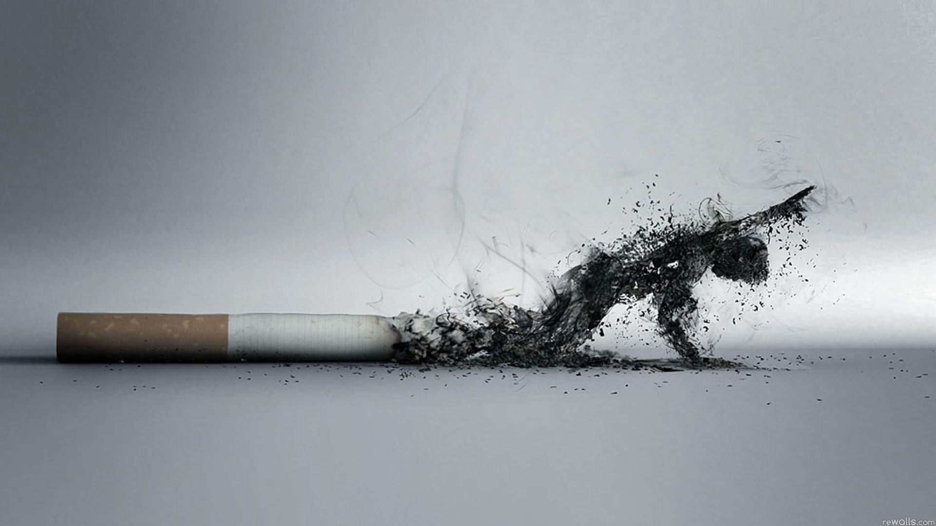 Пушењето – пандемија на смртта